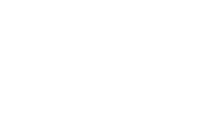The Maine Women's Giving Tree